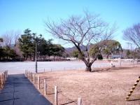 shizuoka_02.jpg
